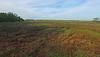 W-7PR INT Marsh PAN south to west_0753