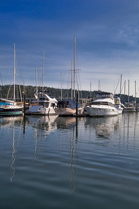 Gig Harbor Area-21
