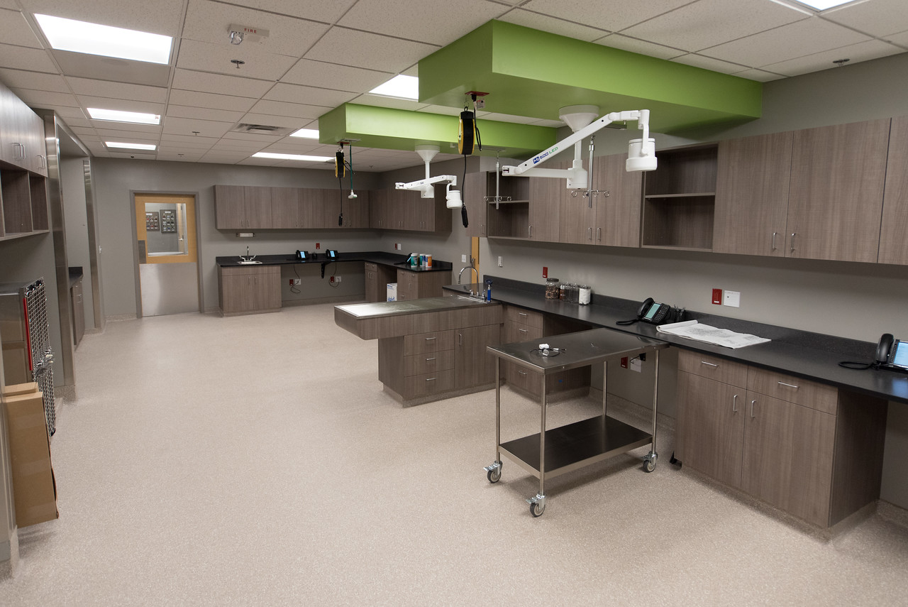 Wheat Ridge Animal Hospital