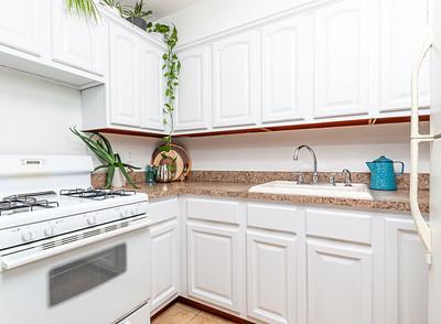 10-2020_47 carroll kitchen_RC-3