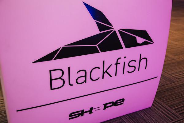Shape Security/Blackfish