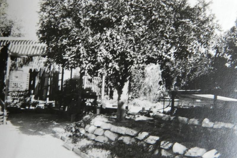 Charles' Hobb's nursery