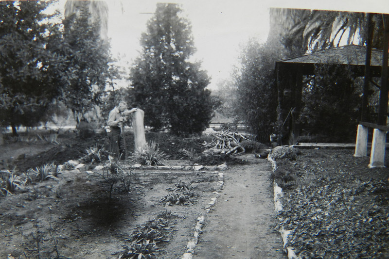 North West side of house looking at the young cedar tree and 'summer house'.  You can see the pillars of the rose arbor to the right of the photo.  The arbor is gone but the pillars are still there along with the rocks and paths.  Notice the young cedar tree which still stands in the yard today.  It is the heartbeat of the front garden!