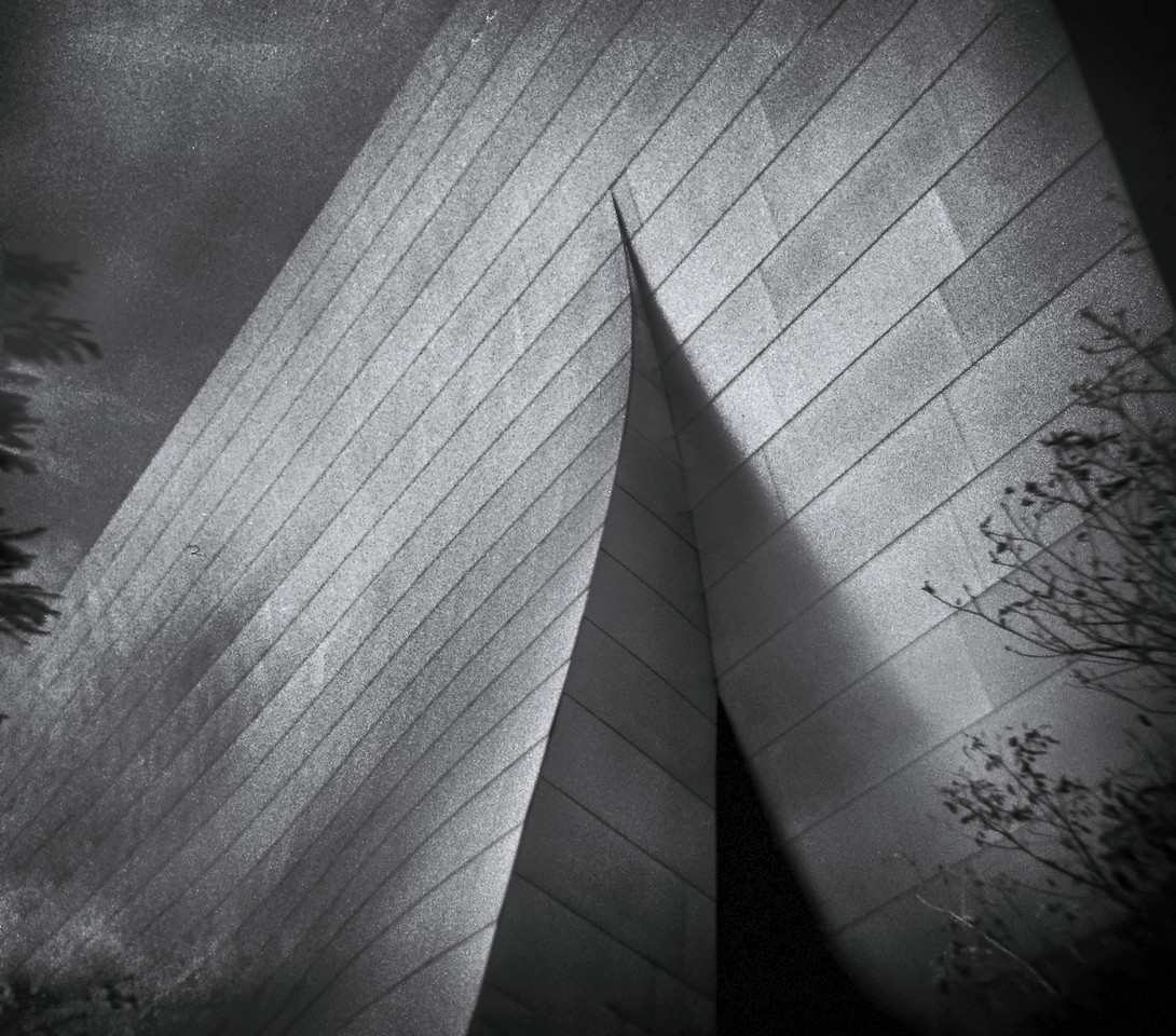 Walt Disney Concert Hall 1