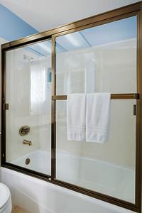 Guest shower-1