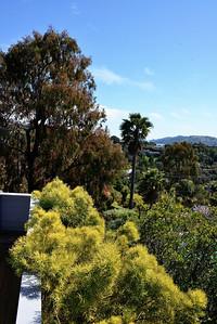 GinaLogan-View-DSC_2866