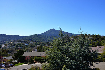 GinaLogan-View-DSC_2867