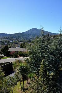 GinaLogan-View-DSC_2868