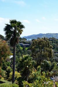 GinaLogan-View-DSC_2863