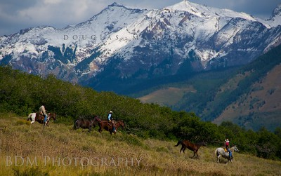 JC Ranch 5788