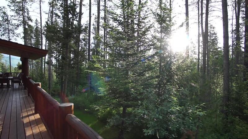 Moose Heaven