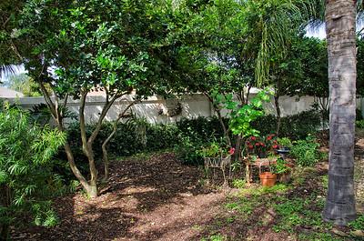 9-backyard view_1