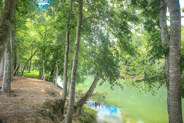 riverdistrict-40.jpg