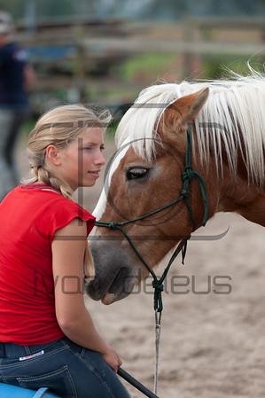 Parelli intensive horsemanship