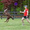 First Toss of Spring-MAD Dogs-3131