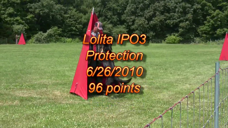 Lolita vom Haus Kiewel IPO3 protection - 96 points