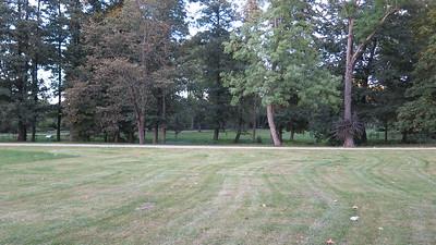 Botanical Gardens Option match to Catherines park