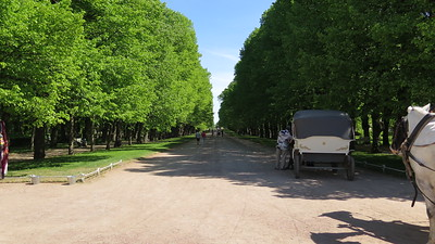 St Petersburg recce 2 day 4