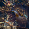 Tidepool - Irridescent Kelp