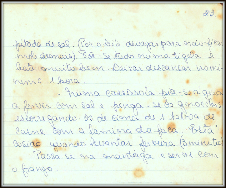 Gnocchis Vienenses, pagina 2