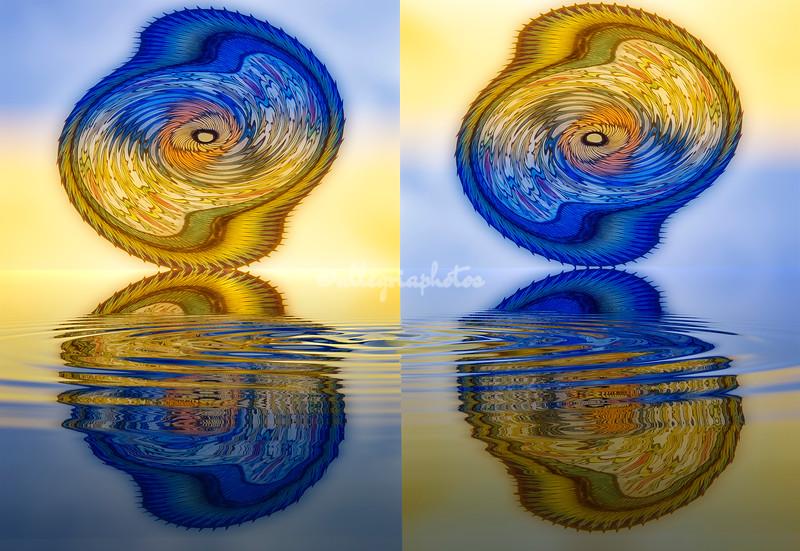 'Mandalla mirrored reflection'