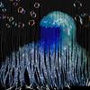 Shredded bubble flow