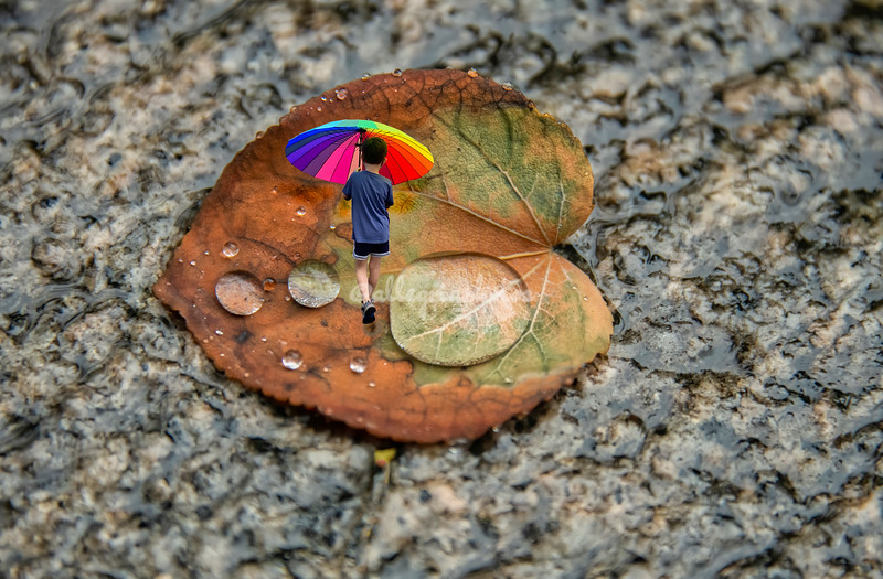 'An autumn walk in the rain'.