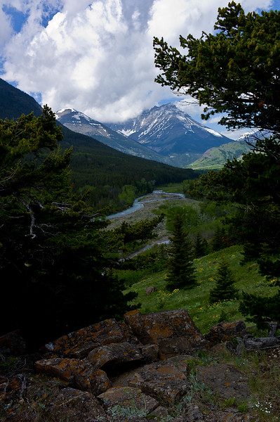 Near Red Rock Parkway, Waterton, Alberta, CD