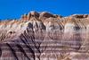 Petrified Hills