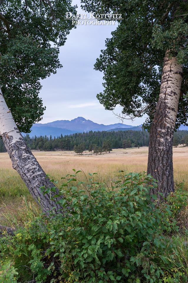 Longs Peak Framed