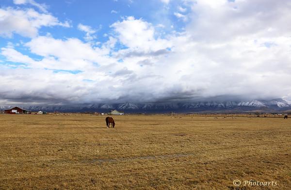 """""""Utah Farm"""""""