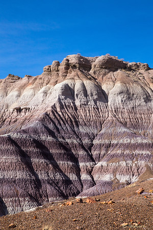 Layers in Blue Mesa