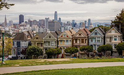Painted Ladies of the Day