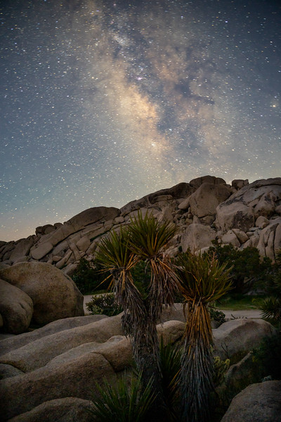 Mojave under the watchful eye of the galaxy.