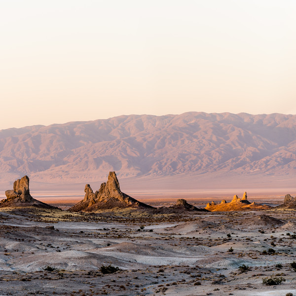 On Kawaiisu and Newe tribes lands the Trona Pinnacles rise from an ancient lake bed.<br /> <br /> During the day you can hear the winds swirling and playing among the pinnacles. Bees and flys buzzing in search of any available liquid that isn't poisoned by the nearby chemical plant. The occasional wren skirting and skipping from shadow to shade among the bushes and pinnacles. Among your feet harvester ants patrol and build thier empires. If you don't wish to taste the calcium and chalky dust you cover your face, for the natural furnace blows ever constant. The camera on its tripod shakes and vibrates even when weighted by hand and pack.<br /> <br /> On a more dry informational note, the pinnacles are primarily made of calcium carbonate (tufa). It is striking and different on close up. Ridges, picks and bone like texture reminds me of dried coral more than stone. These pinnacles were formed around 10k to 100k years ago when a chain of inland seas/lakes spread from mono lake to death valley.