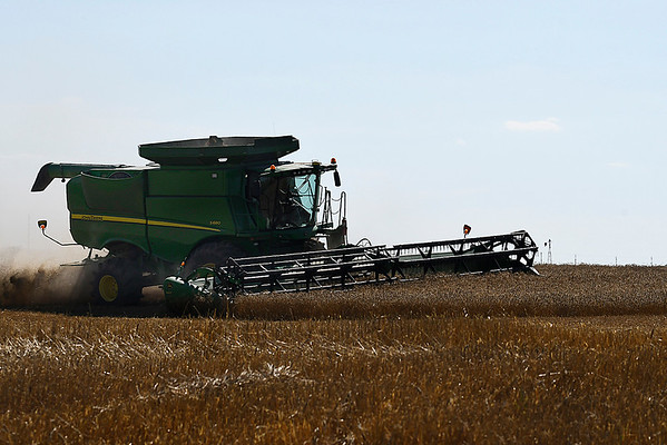 A combine harvest a wheat field on north 54th street Wednesday June 7, 2017. (Billy Hefton / Enid News & Eagle)