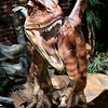 "A Deinonychus is part of the exhibit ""Red Dirt Dinos: An Oklahoma Dinosaur Adventure,"" at Leonardo's Children's Museum. The exhibit runs through September and is included in the general admission. (Billy Hefton / Enid News & Eagle)"