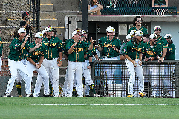 Parkland player react to a homerun against Pitt CC during the 2017 NJCAA DII World Series at David Allen Memorial Ballpark Monday May 29, 2017. (Billy Hefton / Enid News & Eagle)