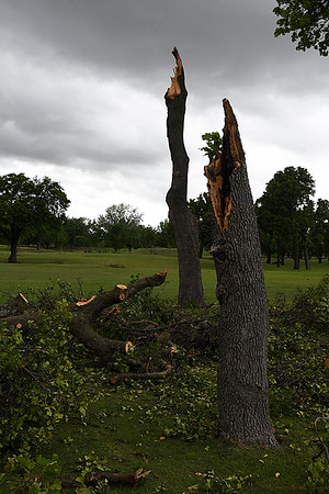 Damaged trees on the 13th fairway at Oakwood Country Club Wednesday May 3, 2017. (Billy Hefton / Enid News & Eagle)