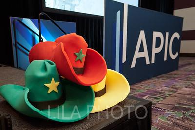 APIC2_214