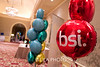 BSI : 7 galleries with 589 photos
