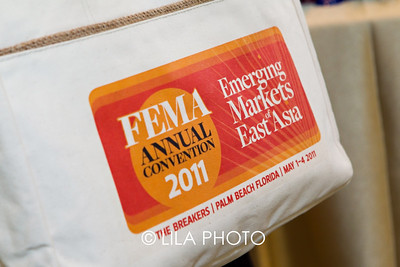 FEMA2a_001
