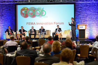 FEMA4_017