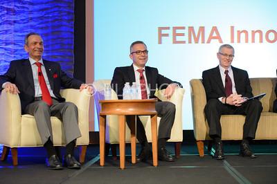FEMA4_012
