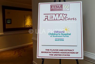 FEMA2_062