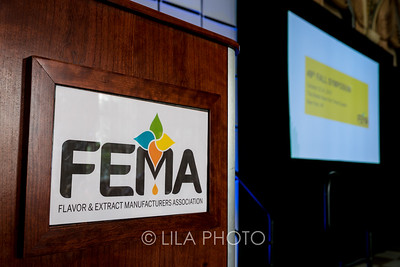 FEMA2_002