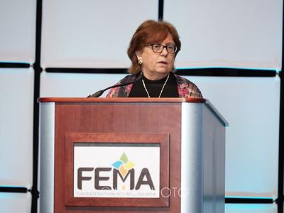 FEMA3_016