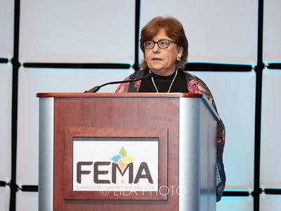 FEMA3_017