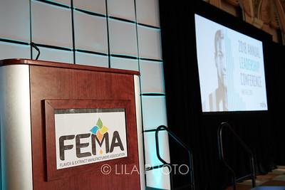 FEMA3_001