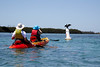 PC_Wed_07_KAYAK_0053